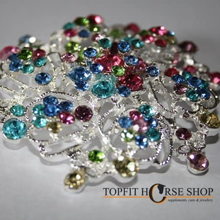 plastronspeld color strass 1