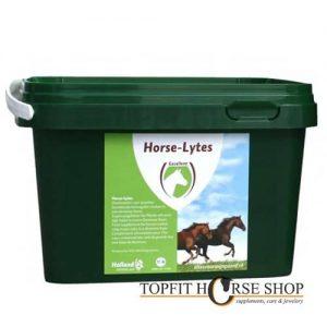 horse-lytes electrolyten
