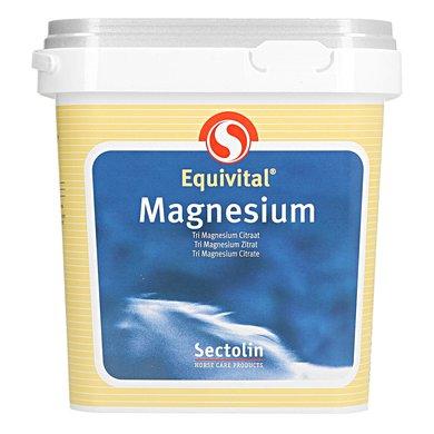 equivital-magnesium