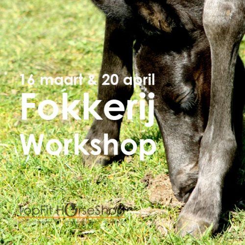 workshop-fokkerij